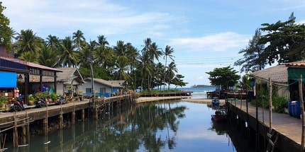 klong mad view