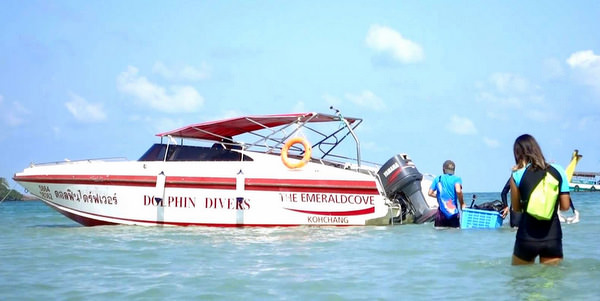 dolphin-divers-koh-chang