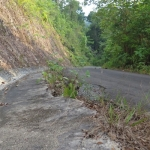 wai-chek-beach-koh-chang-road